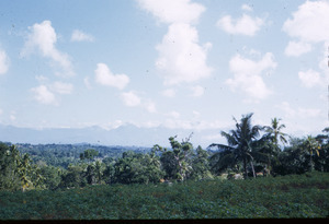 Uplands scenery in South India