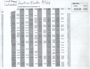 Provincetown AIDS Support Group Auction Funds Non-Reimbursable Medical Fund 1995