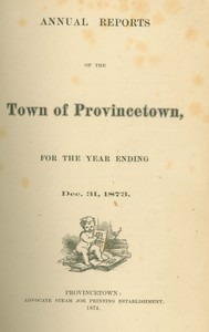 Annual Town Report - 1873