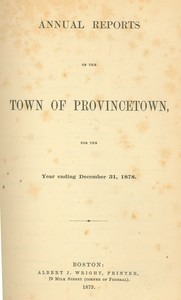 Annual Town Report - 1878