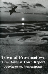 Annual Town Report - 1996