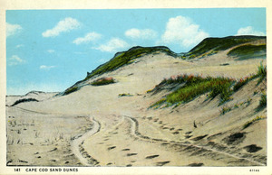 Early 20th Century Provincetown Scenes
