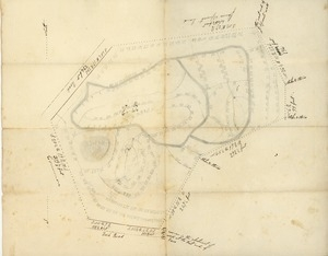 Plan of land surveyed for a burial ground