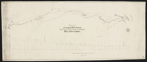Plan of a proposed railroad from Hopkinton to Milford / William F. Ellis, engineer.