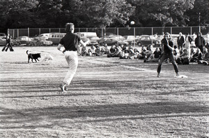 Boston Phoenix vs. WBCN staff softball game: throw to first while dogs play in outfield