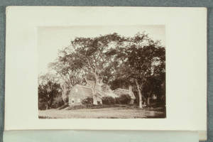 [Heliotype illustrations from photographs in The woods and by-ways of New England]