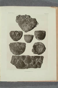 [Albertype plates of fossils and heliotype plates of Indian artifacts in Memoirs of the Geological survey of Kentucky]