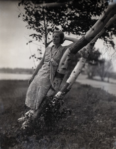 Gertrude Kear (?) posed, leaning against a birch tree