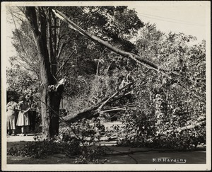 New England Hurricane, 1938
