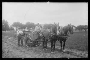 Farmers with tobacco setter