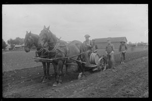 Planting tobacco - men and horse-drawn tobacco setter
