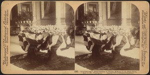"""""""It is God's way"""" - mortal remains of William McKinley in the White House, Sept. 17, 1901, Washington"""
