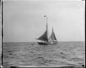 Schooner Liberty pilot boat, Boston Harbor