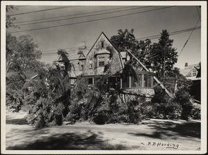 New England Hurricane, 1938. Hurricane damage