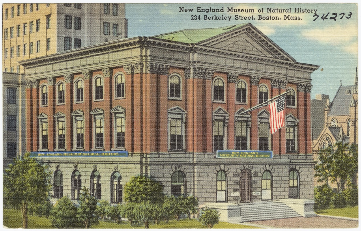 New England Museum of Natural History, 234 Berkeley Street, Boston, Mass.