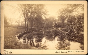 Sudbury Reservoir, real estate, Brook looking west--Burnett's property, Southborough, Mass., ca. 1893