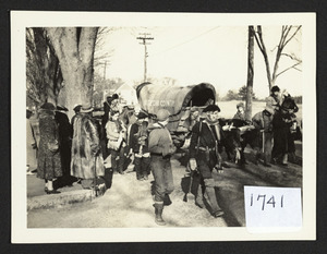 Covered wagon departure on the road in North Beverly, oxen and trekers
