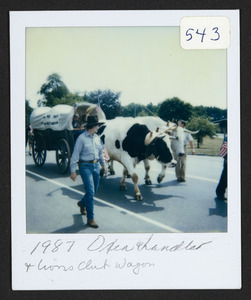 1987 oxen and handler and Lions Club wagon
