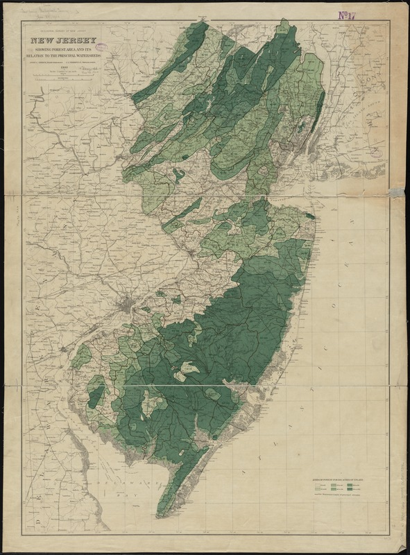 New Jersey showing forest area and its relation to the principal watersheds