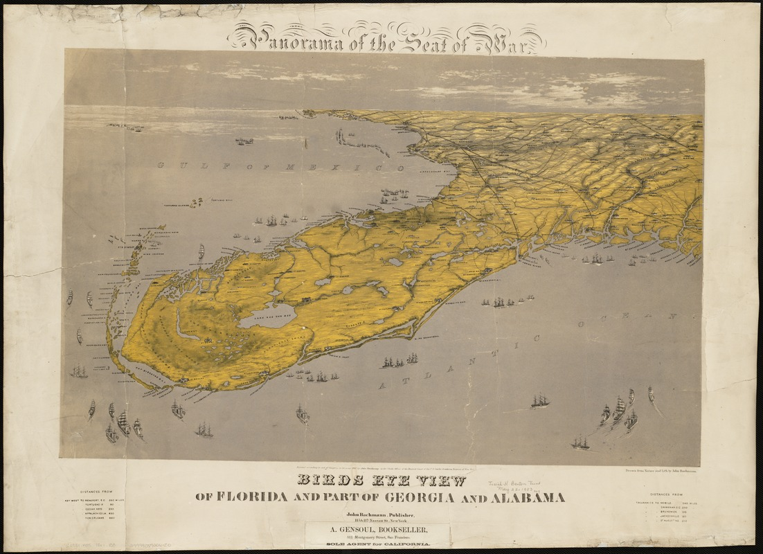 Florida And Georgia Map.Birds Eye View Of Florida And Part Of Georgia And Alabama Norman B