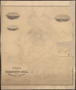 Plan of Chesnut Hill, in Brookline & Newton
