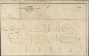 Plan of the U.S. Marine Hospital estate Chelsea, Mass