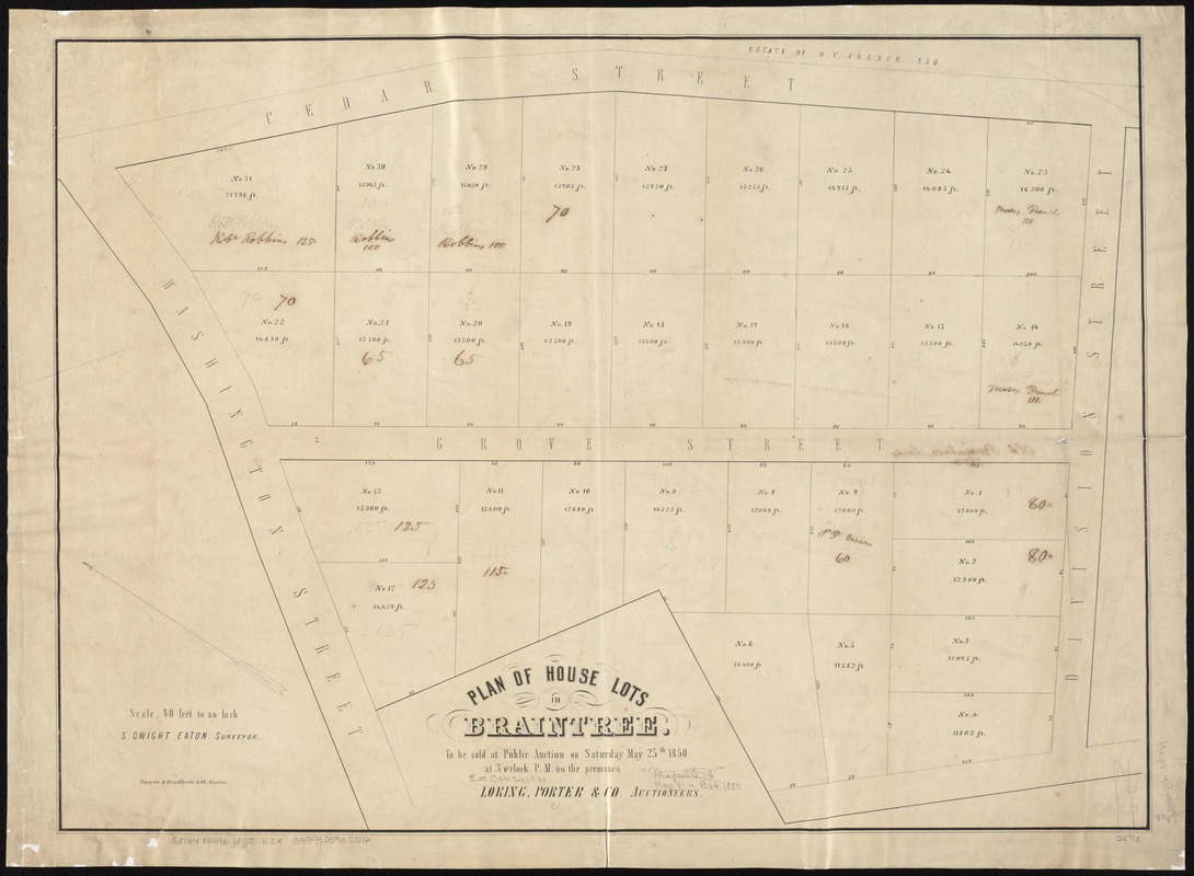 Plan of house lots in Braintree