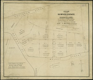 Plan of the Sumner Estate in Brookline