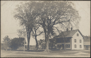 Photo of home with three trees in front yard