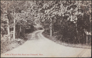 A Bit of Woods Hole Road near Falmouth