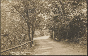 Road at Quissett Harbor Falmouth Mass
