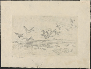 """Drawing for """"Wild Geese"""""""