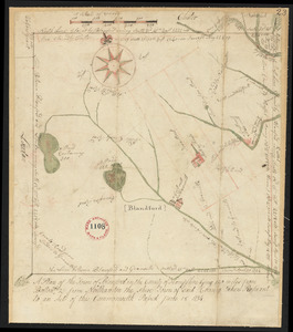 Plan of Blandford, surveyor's name not given, dated 1794-5.