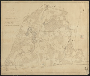 Plan of Foxborough made by John M. Everett, dated 1830