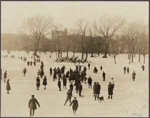 Park department: Public Garden, Boston. Winter sports on pond