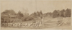 Parks: View of stone wall and fence in Arnold Arboretum, Jamaica Plain
