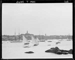 Sailboats, Marblehead Harbor, photographed from Grey Court landing
