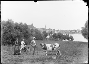 Charles W. Parker, Mary Parker with dog, and cow on Marblehead Neck, MA