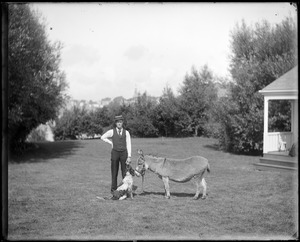 Charles S. Parker with dog and donkey, Marblehead, MA