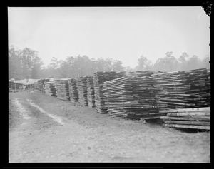 Lumber mill, West Rutland, Mass.