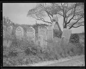 Graveyard, possibly North Shore