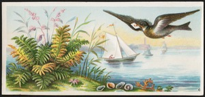 Bird holding a letter in its beak flying over water, plants in the foreground, boats in the background.