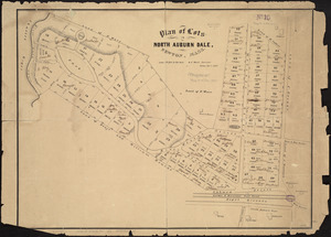 Plan of lots in North Auburn Dale, Newton, Mass