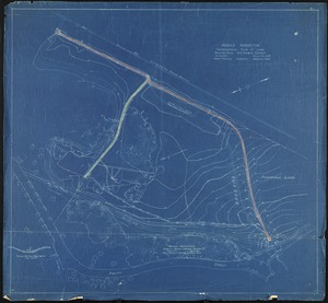 Arnold Arboretum topographical plan of land