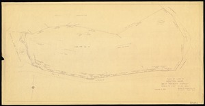 Plan of land in Boston, Mass. [Bussey Institution Property]