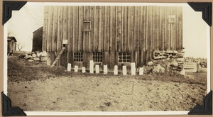 The cats' grave-yard in front of the Taylor barn