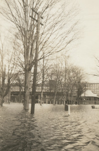 From the front of 60 Salem St. across south Common at Mill that is now Bull/Honeywell, N. And.