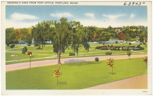 Deering's Oaks from Post Office, Portland, Maine