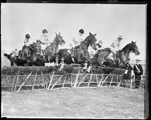 Steeplechase at the Harville Hudle race, Wye, Kent, England