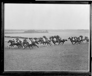 Horse racing at the Cesarewitch, West Wicklow, England. C. Richards winning.